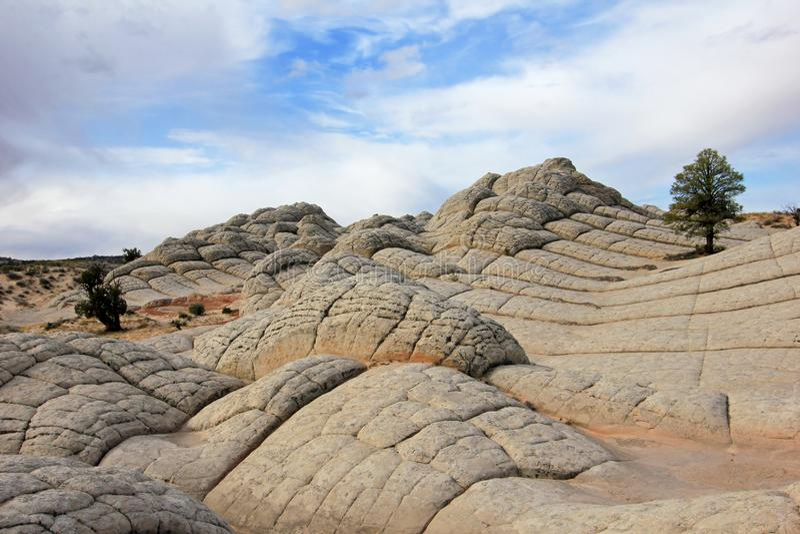 El cerebro, una formación de roca en el bolsillo blanco, motas CBS del sur, desierto bermellón de los acantilados del barranco de imagen de archivo