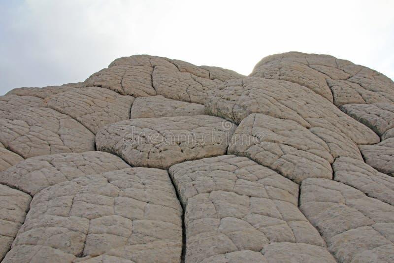 El cerebro, una formación de roca en el bolsillo blanco, motas CBS del sur, desierto bermellón de los acantilados del barranco de foto de archivo libre de regalías