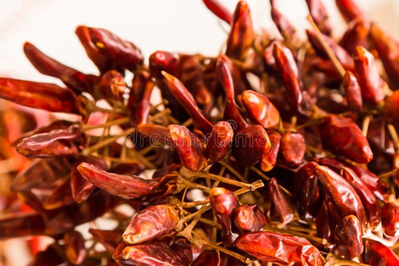 El chile picante determinado sazona la mini vaina con pimienta húngara muchas salsas bajas aromáticas fuertemente acres de las fr imagen de archivo