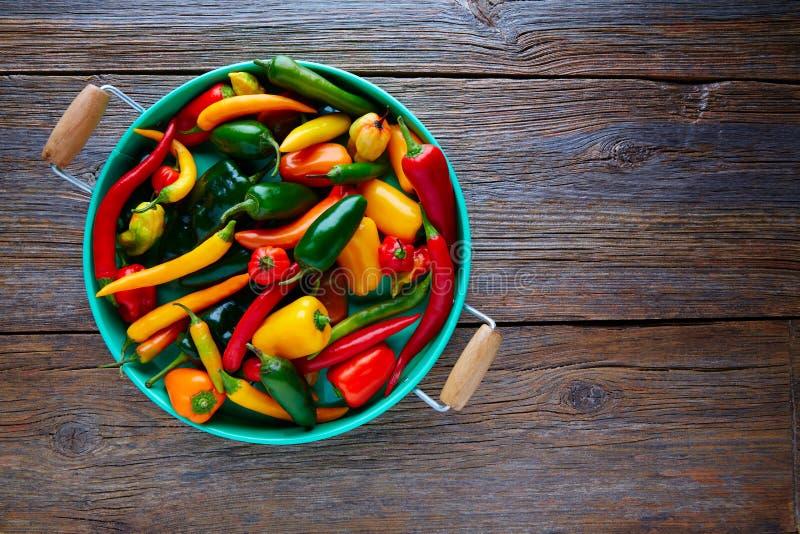 El chile picante mexicano sazona la mezcla con pimienta colorida imagen de archivo libre de regalías