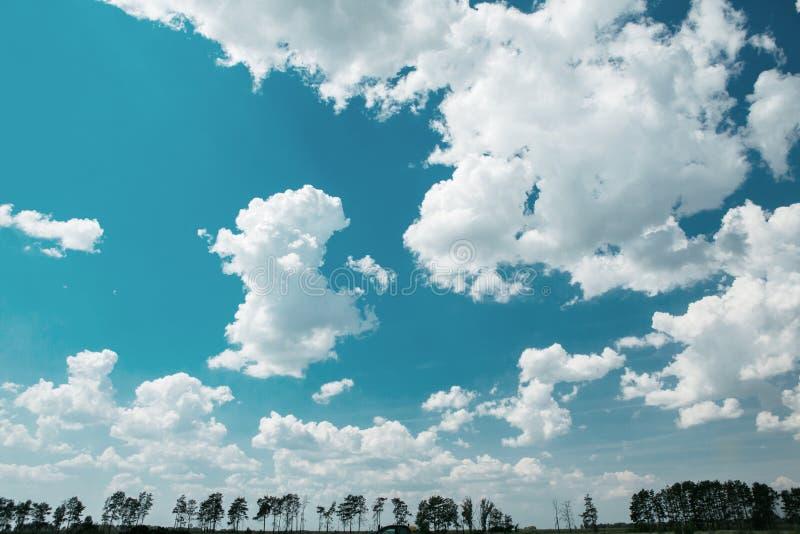 El cielo azul con las nubes blancas, y en la parte inferior de la foto a lo largo del perímetro entero, los tops de árboles puede imágenes de archivo libres de regalías