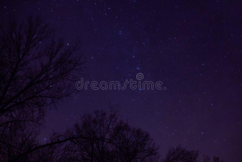 El cielo nocturno es lleno de constelaciones en el condado de Ottertail en Minnesota central foto de archivo
