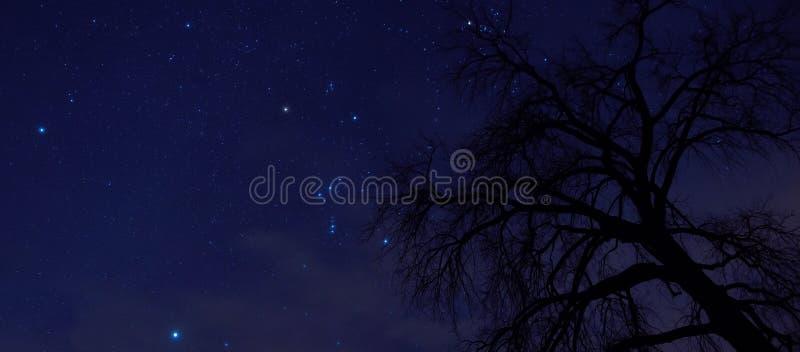 El cielo nocturno es lleno de constelaciones en el condado de Ottertail en Minnesota central fotos de archivo