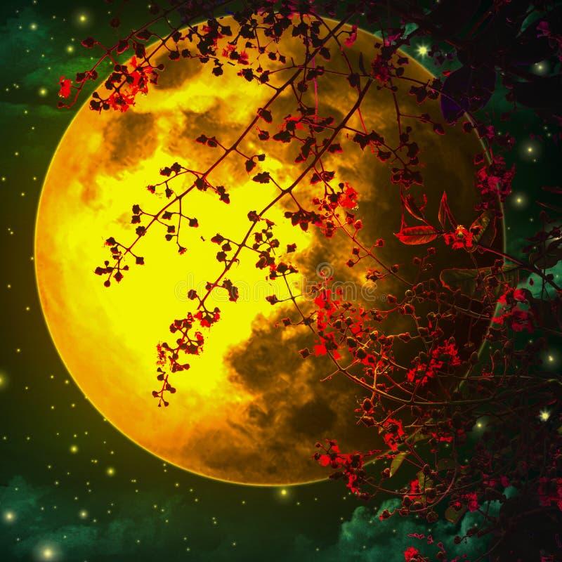 El cielo nocturno es romántico, con una luna anaranjada grande y una hoja roja, flotando maravillosamente, pareciendo una de las  fotos de archivo