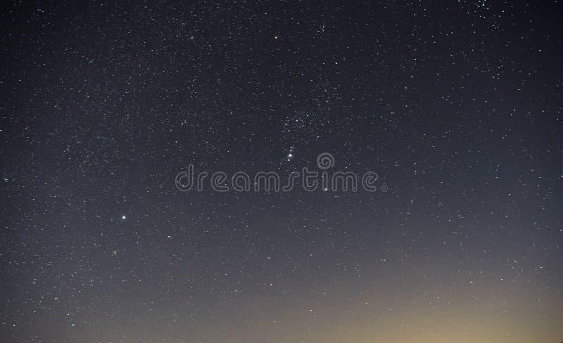El cielo nocturno oscuro azul con muchos protagoniza sobre el campo de árboles foto de archivo