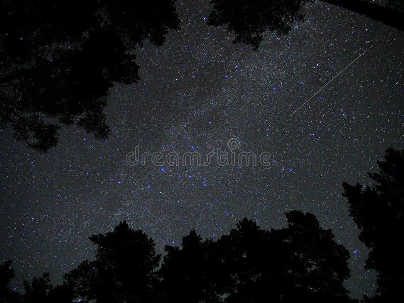 El cielo nocturno protagoniza la constelación del cassiopeia de los meteoritos de los perseids imagen de archivo