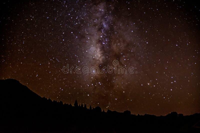 El cielo nocturno y las estrellas y las constelaciones visibles de Mirador Astronomical LLano del Jable, La Palma, islas de Canar fotografía de archivo libre de regalías