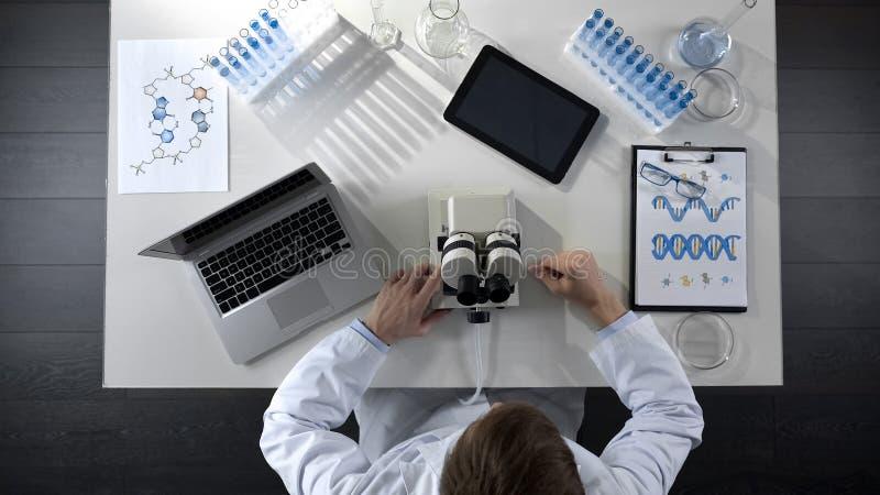 El científico que trabaja en el ordenador y el microscopio en laboratorio, investiga la visión superior fotografía de archivo
