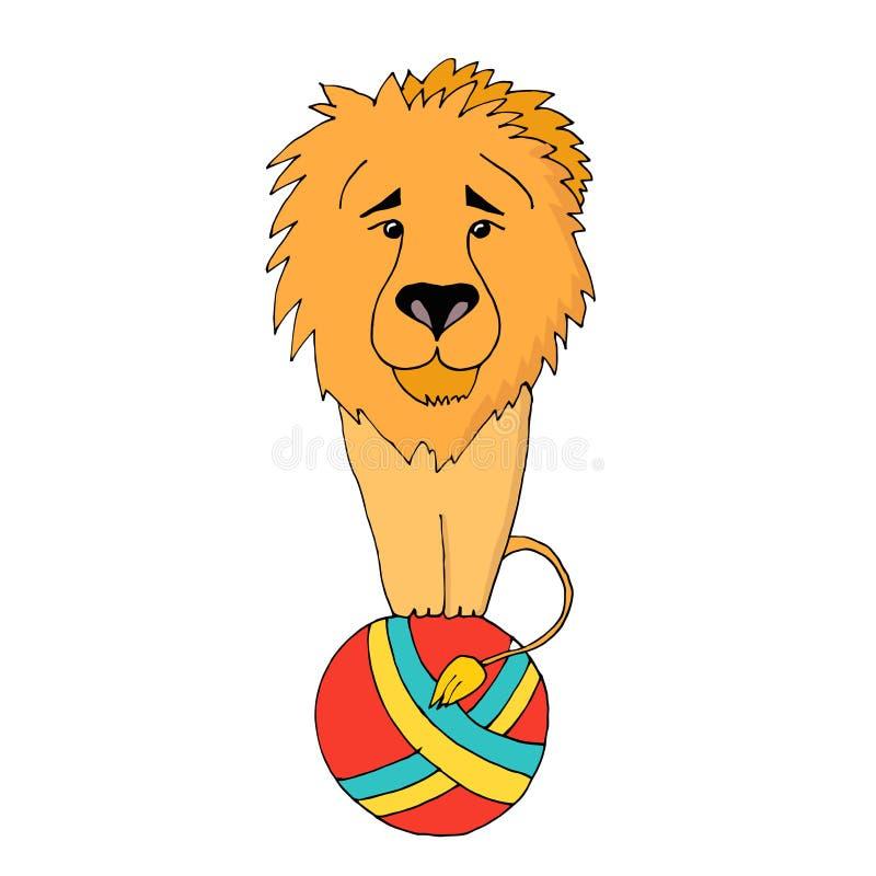 El circo entrenó al león que se sentaba en una bola Ejemplo del vector, aislado en el fondo blanco libre illustration