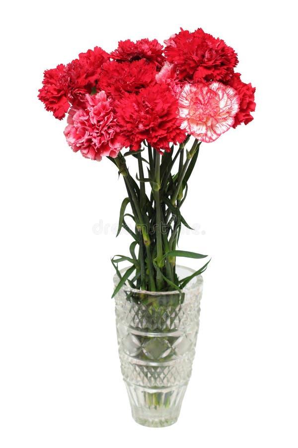 El clavel florece el ramo en florero fotografía de archivo libre de regalías
