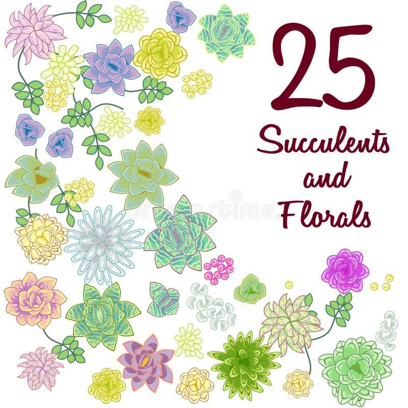 El clip art suculento del jardín florece el sistema de elemento stock de ilustración