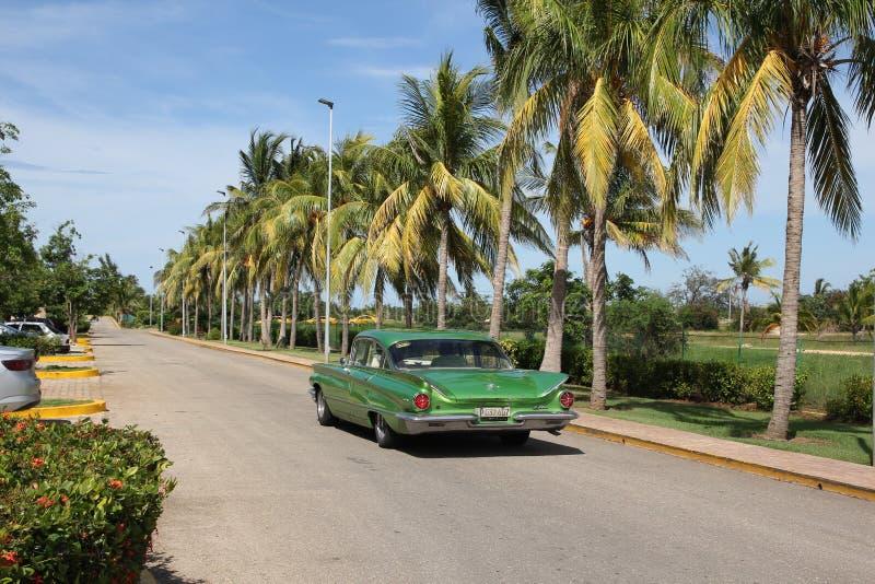 El coche americano del vintage verde monta a lo largo de una fila de palmeras altas fotografía de archivo