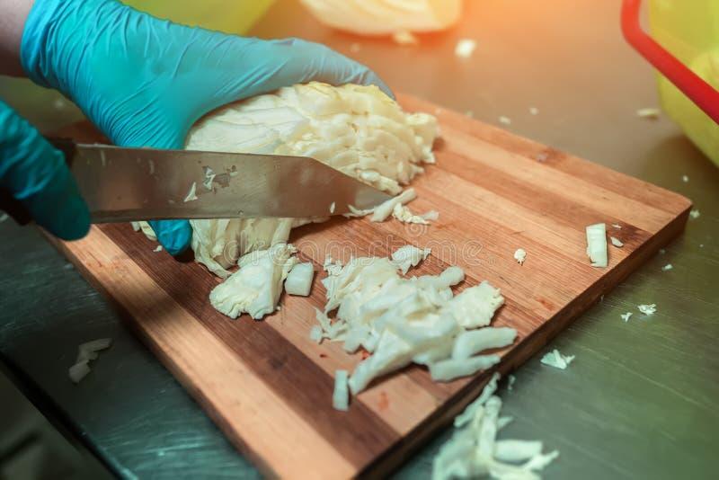 El cocinero corta el primer de la col imagen de archivo
