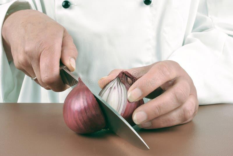 El cocinero de sexo femenino corta una cebolla de la lila foto de archivo