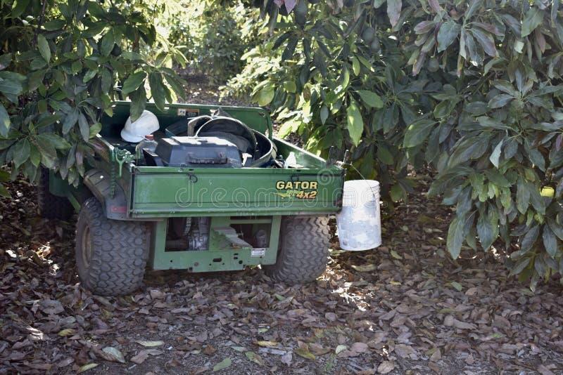 El cocodrilo, un vehículo utilitario de poca potencia de la granja, 2 imagen de archivo
