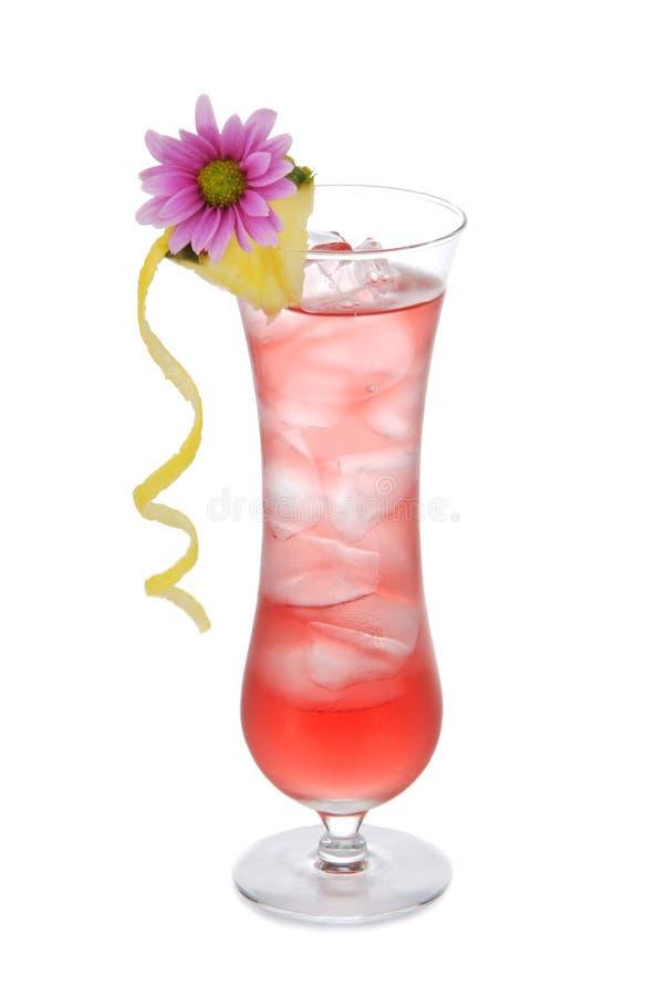 El coctel Long Beach heló té con la vodka fotografía de archivo libre de regalías