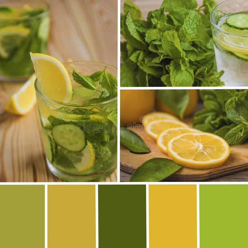 El collage del detox del limón y del pepino riega con la paleta de color fotos de archivo libres de regalías