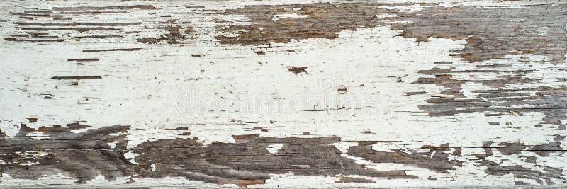 El color blanco sucio pintado, lamentable envejeció textura de madera del tablón imagen de archivo libre de regalías
