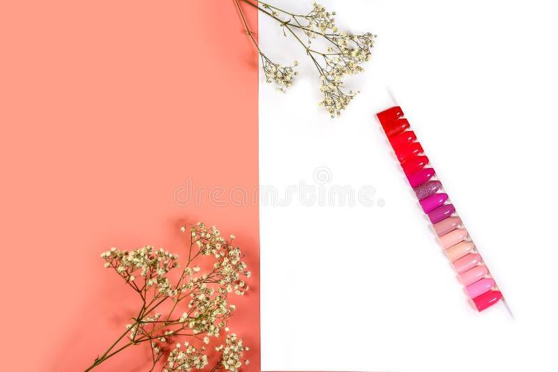 El color del polaco para las sombras de la manicura del rosa Diseño para los clavos esmalte de uñas de los probadores Manicura de foto de archivo libre de regalías