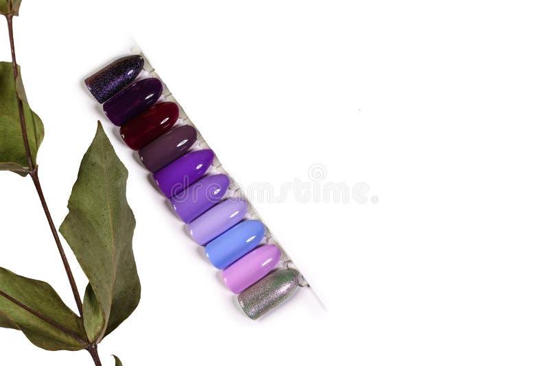 El color del polaco para las sombras de la manicura de la violeta Diseño para los clavos esmalte de uñas de los probadores Manicu fotografía de archivo libre de regalías