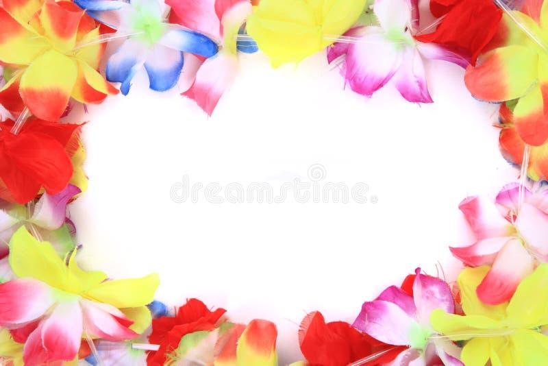 El color Hawaii plástica florece el fondo fotos de archivo