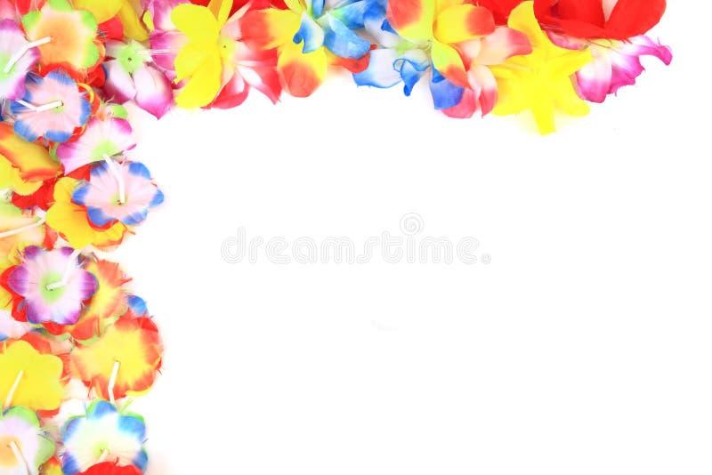 El color Hawaii plástica florece el fondo imagen de archivo libre de regalías