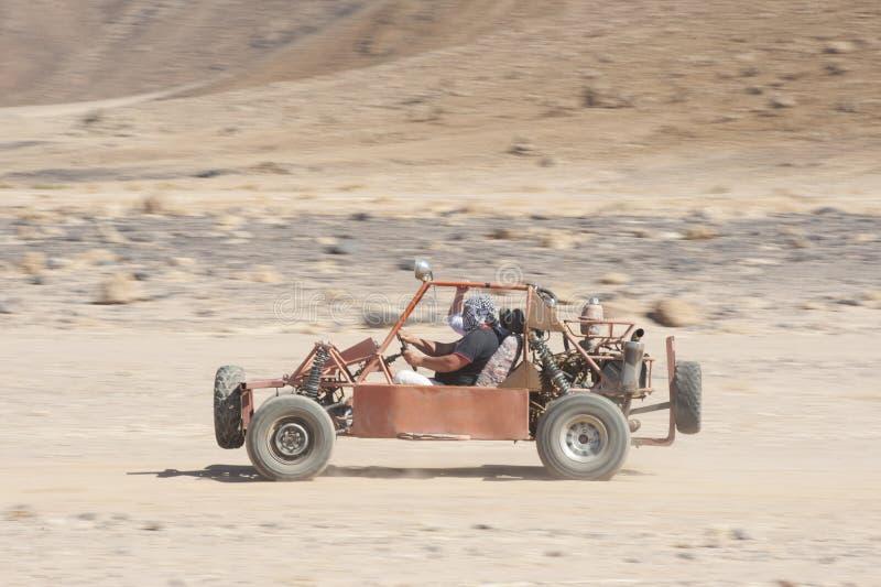 El competir con con errores del desierto a través de la tierra fotografía de archivo libre de regalías