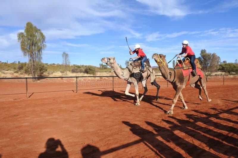 El competir con de camello en el Territorio del Norte Australia de Uluru Yulara imágenes de archivo libres de regalías