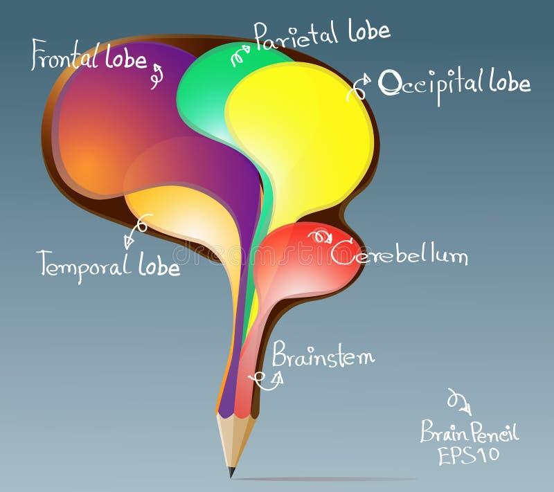 El concepto creativo del lápiz del ser humano burbujea cerebro ilustración del vector