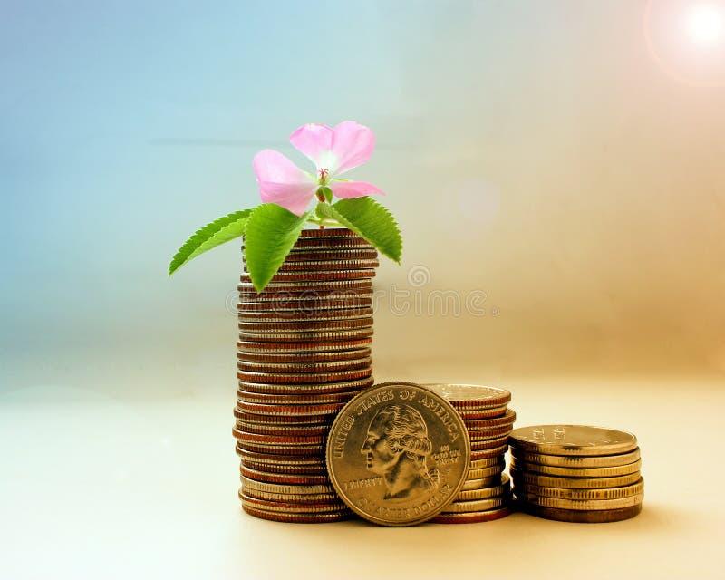 El concepto de crecimiento de dinero, del éxito y de prosperidad imágenes de archivo libres de regalías