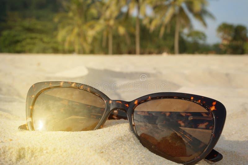 El concepto de días de fiesta y de viaje de la playa Gafas de sol en la arena en la playa, luz del sol, lugar de Brown para el te imágenes de archivo libres de regalías