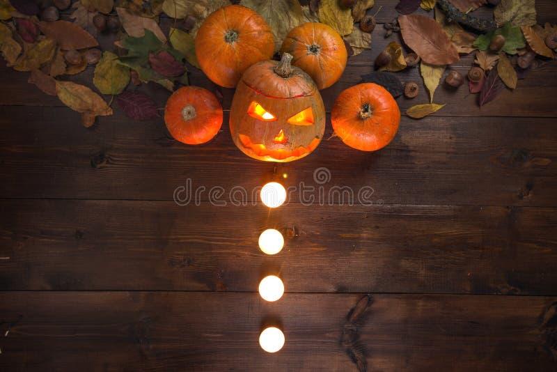 El concepto de Halloween todavía del otoño de vida fotografía de archivo libre de regalías