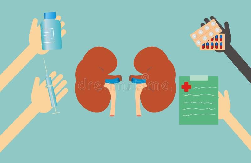 El concepto de la salud - tratamiento del riñón ilustración del vector