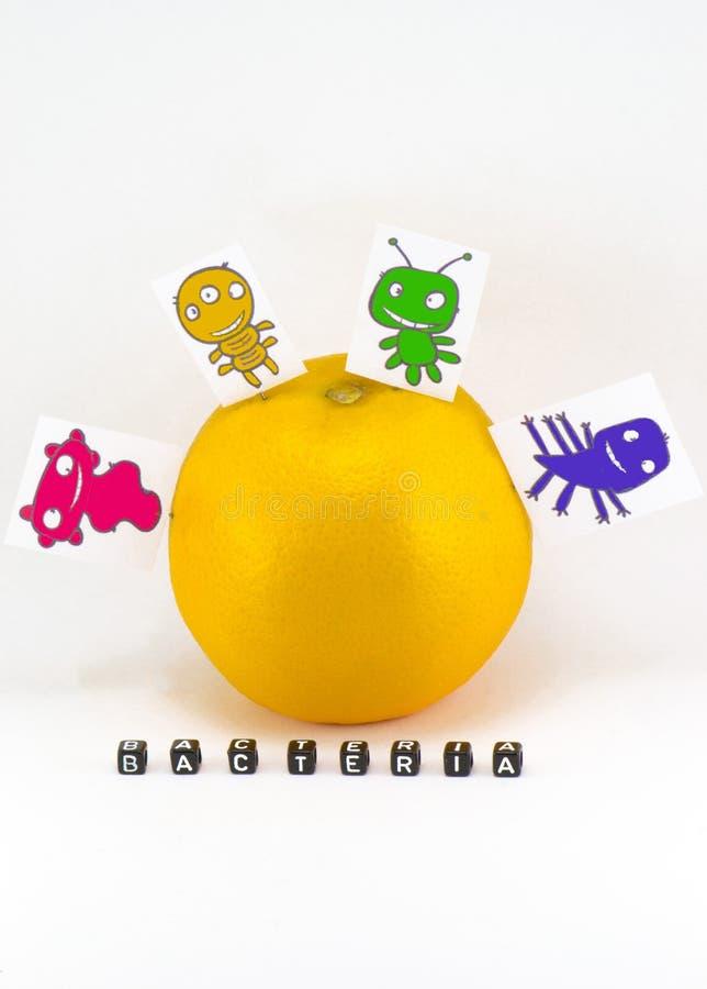 El concepto de las bacterias imágenes de archivo libres de regalías