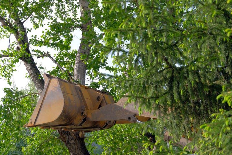 El concepto de protección del medio ambiente Actitud negligente hacia la naturaleza El cubo del tractor descansado contra un árbo foto de archivo libre de regalías
