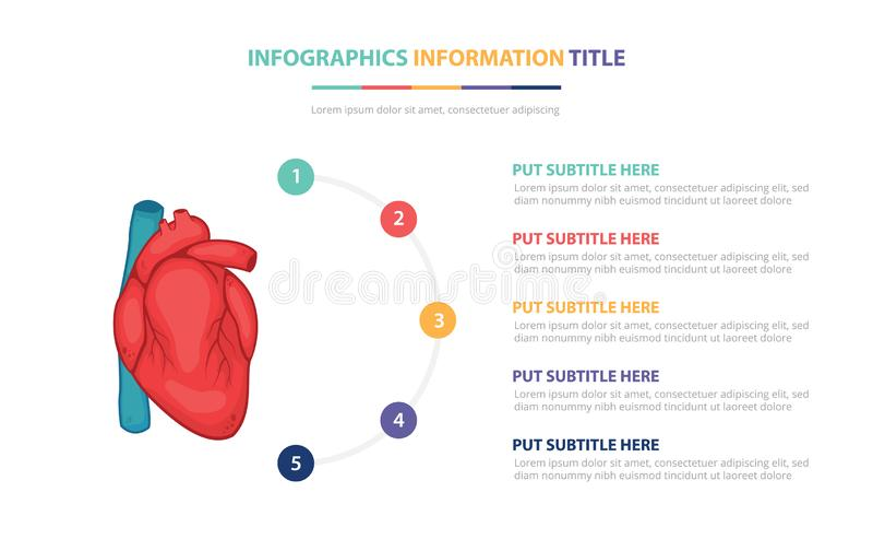 El concepto infographic de la plantilla de la anatom?a humana del coraz?n con cinco puntos enumera y diverso color con el fondo b ilustración del vector
