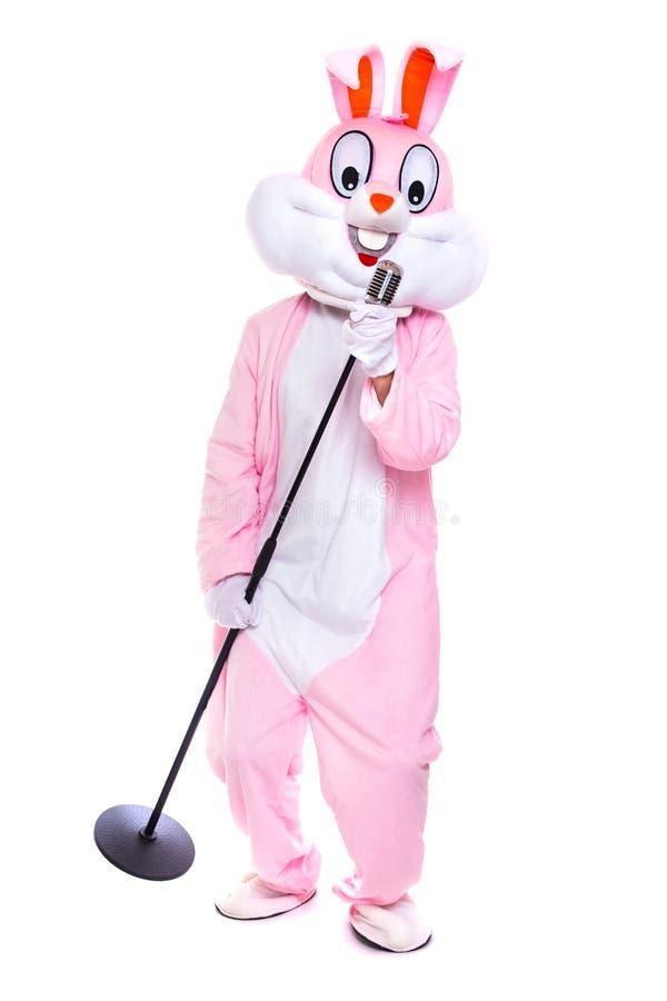 El conejito de pascua relleno de tama?o natural canta en micr?fono retro, celebra pascua, baila en el fondo blanco Divertido, fel fotografía de archivo libre de regalías