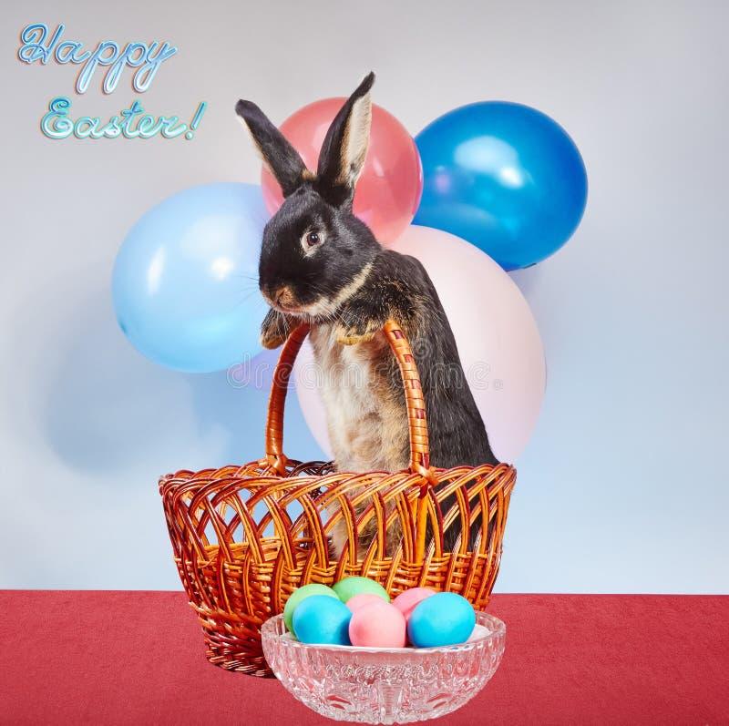 El conejo se coloca en una cesta cerca de los huevos de Pascua en un florero fotos de archivo