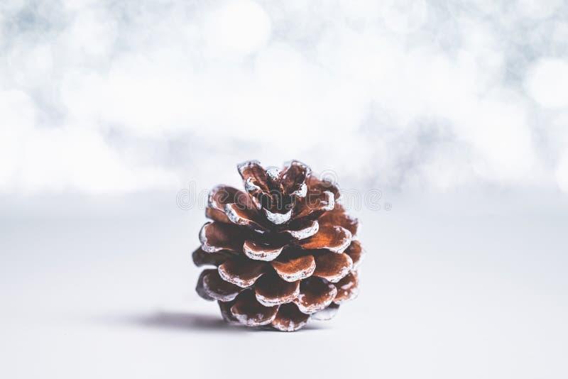 El cono del pino de Brown en la luz blanca del bokeh de la tabla y de la plata empaña el backg imágenes de archivo libres de regalías
