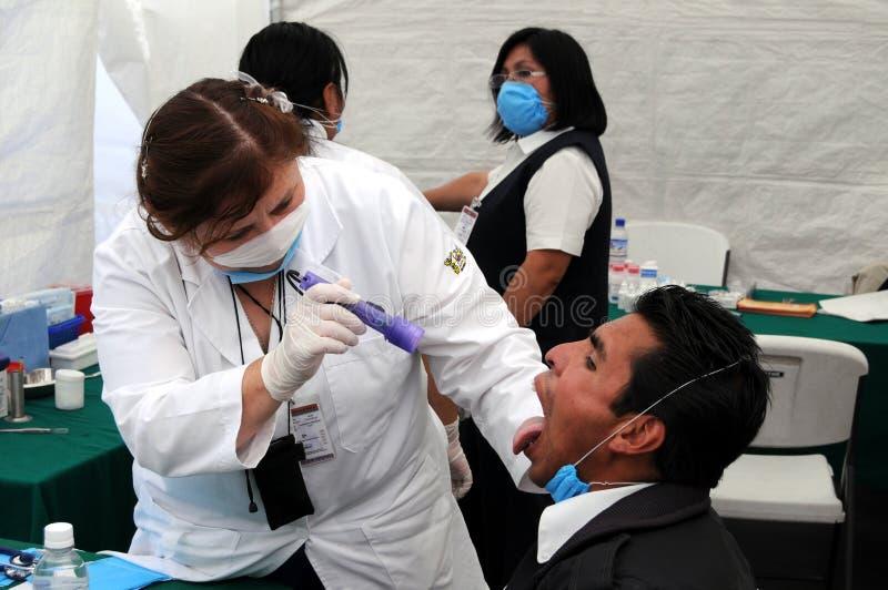 El controlar para saber si hay gripe de los cerdos H1N1 fotos de archivo libres de regalías