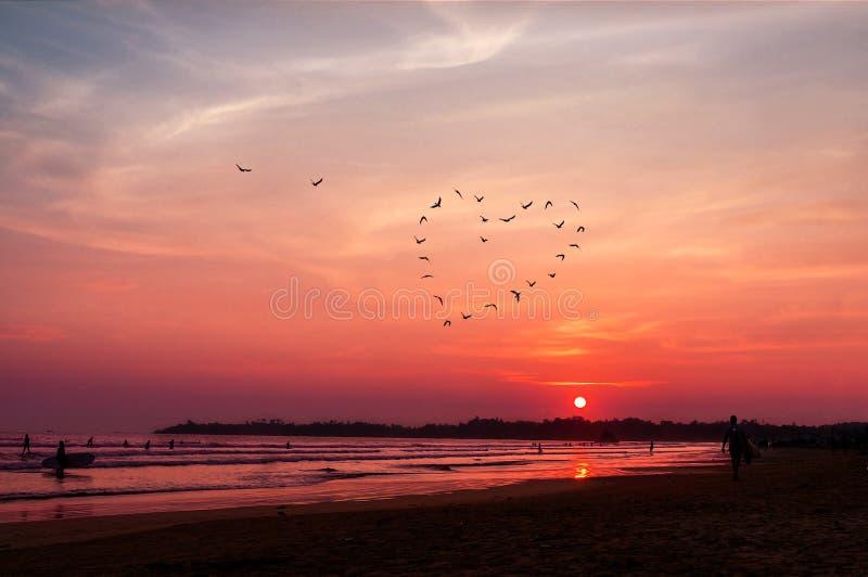 El corazón de los pájaros siluetea el vuelo sobre el mar contra puesta del sol fotografía de archivo