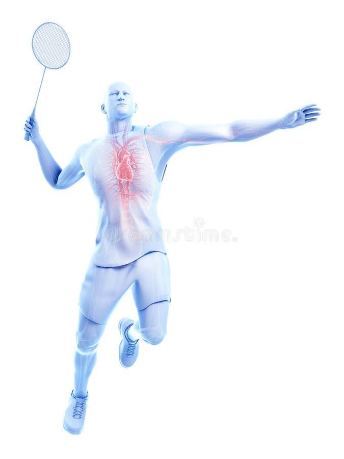 El corazón de un jugador del bádminton stock de ilustración