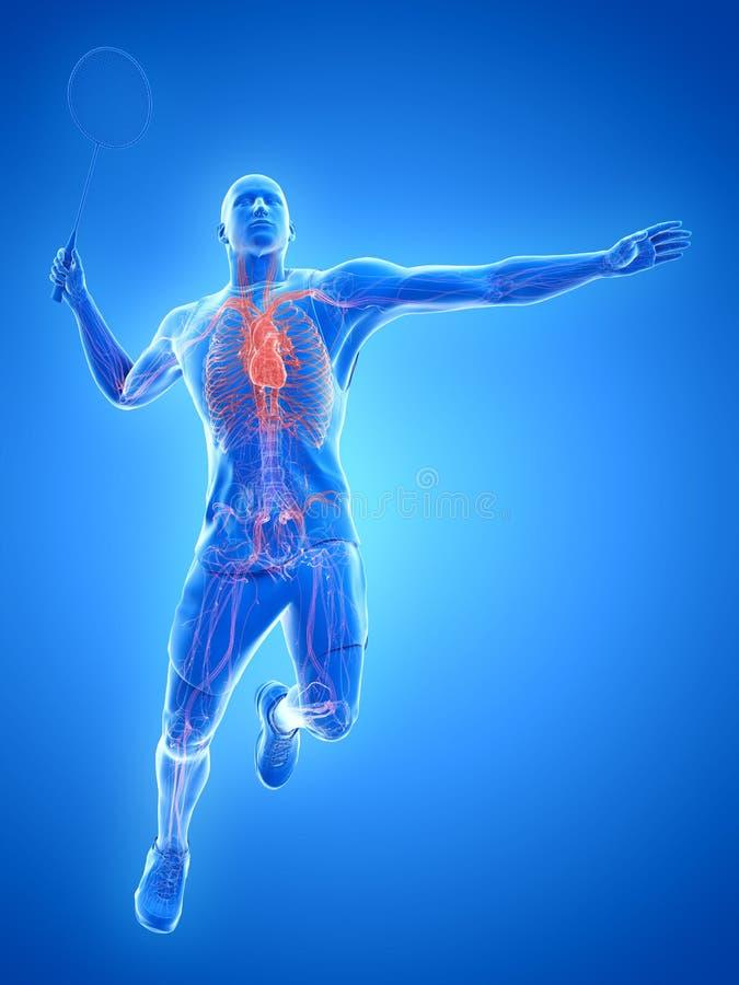 El corazón de un jugador del bádminton ilustración del vector