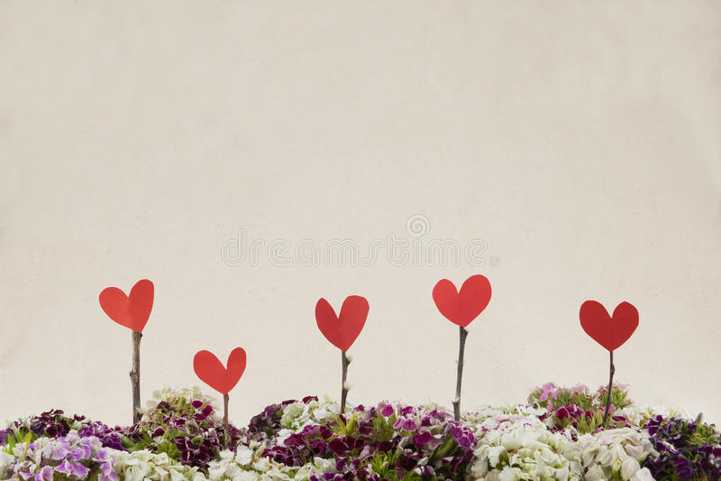El corazón firma con el ramo dulce colorido de las flores de Guillermo fotos de archivo