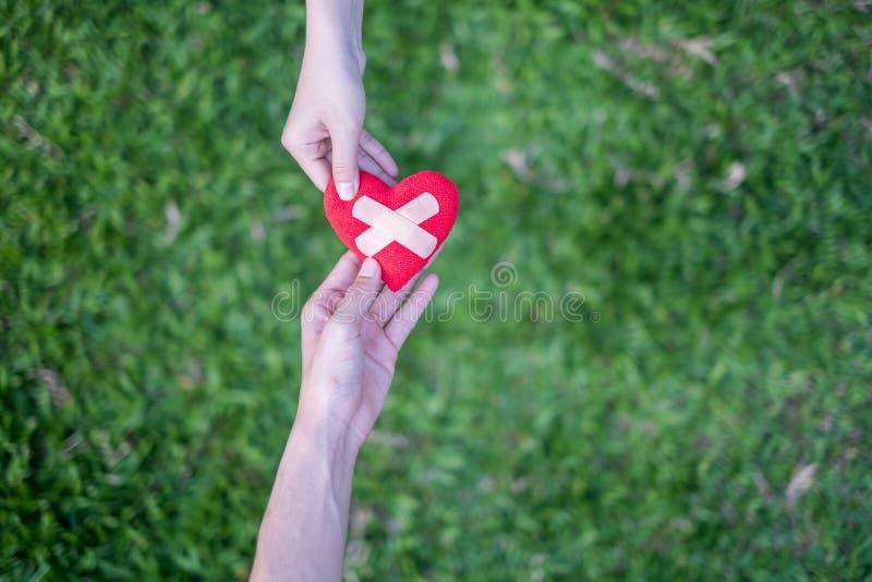 El corazón rojo en las manos de la mujer y manos las dos de los hombres se restauran Significa las manos amigas en épocas difícil imagenes de archivo