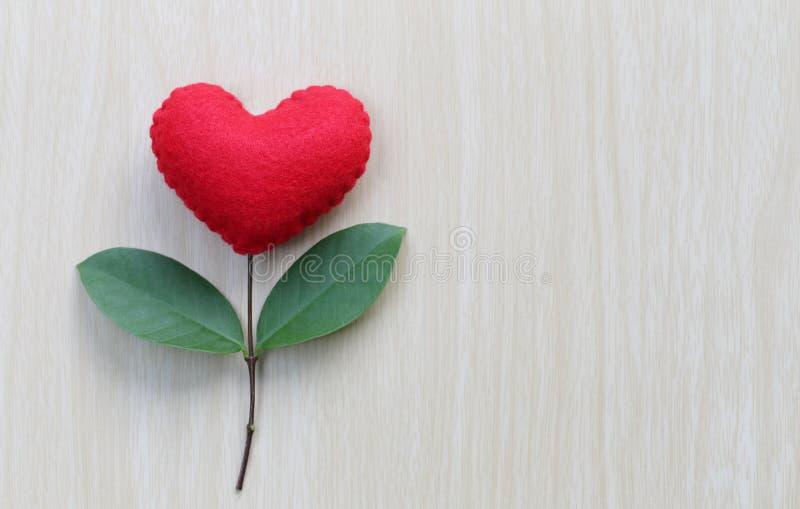 El corazón rojo puesto en una tabla de madera adentro conecta con las ramas de t fotos de archivo libres de regalías