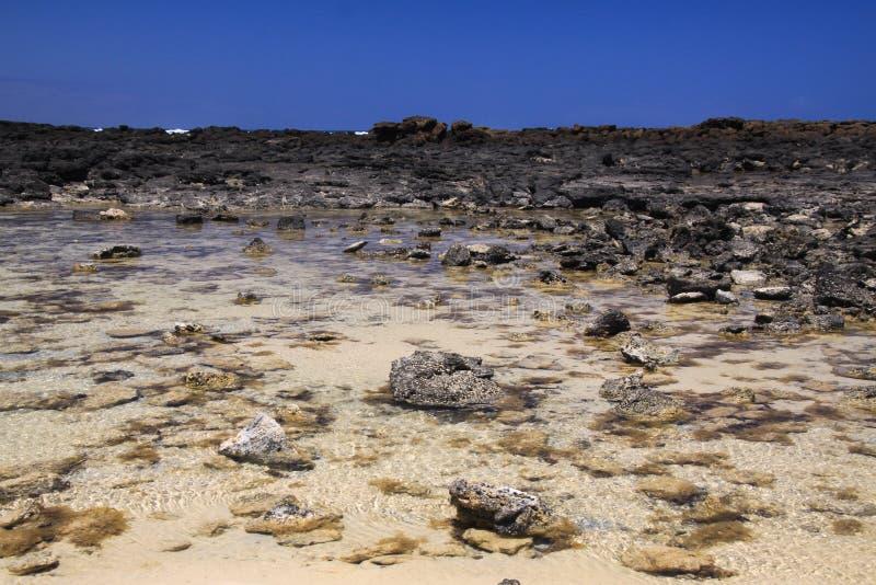 El Cotillo - Faro del Toston: Взгляд на естественном бассейне с камнями окруженными черными вулканическими породами северной Фуэр стоковые фото