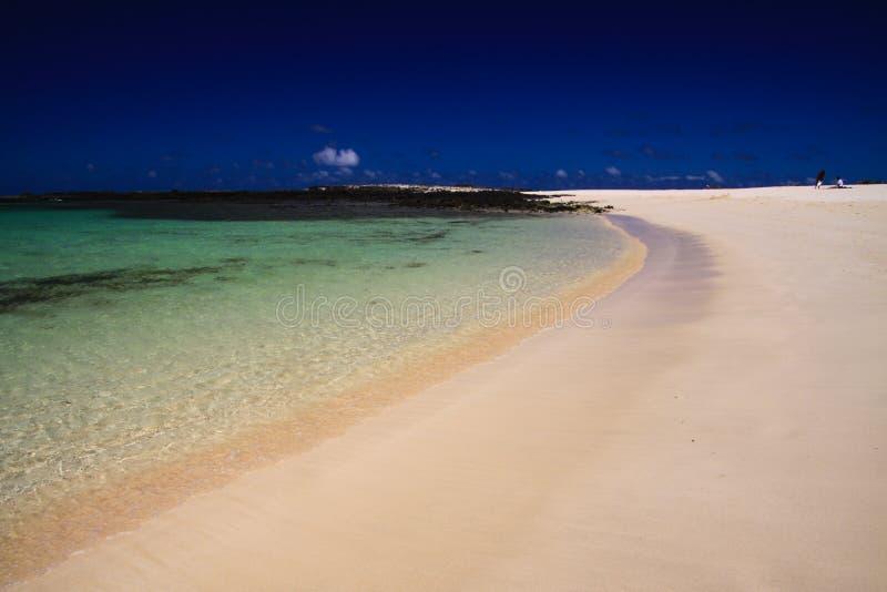 El Cotillo, norr Fuerteventura: Sikt över den ljusa vita sandstranden på turkoslagun av strandLaconchaen mot djupblå himmel arkivfoto