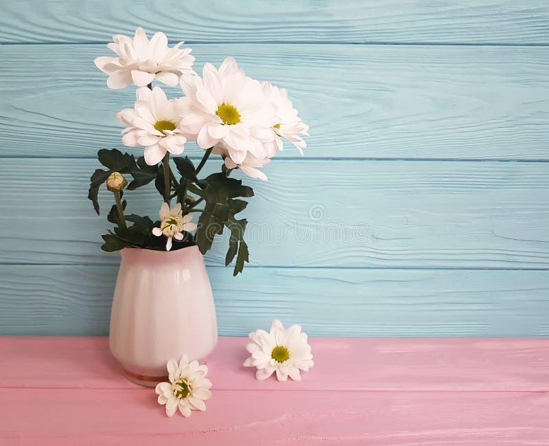 El crisantemo del florero florece en un de madera rosado y azul imagenes de archivo