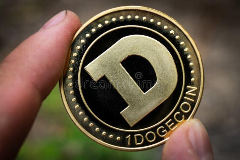 El cryptocurrency del DUX de Dogecoin significa del pago en el sector financiero fotografía de archivo libre de regalías